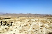 تثبیت دمای زمین با احیای خاک