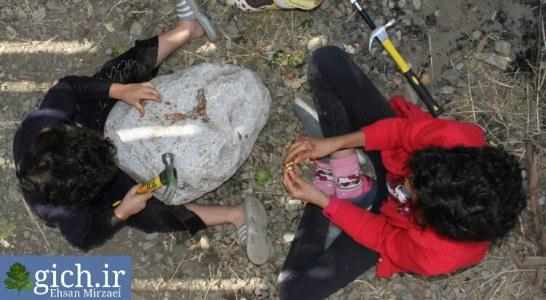 گزارش تصویری از مدرسه طبیعت داربانان آتی