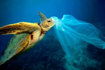 راهکار کاهش مصرف کیسه پلاستیکی