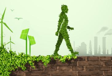 اصول سبزگرا (بخش دوم)