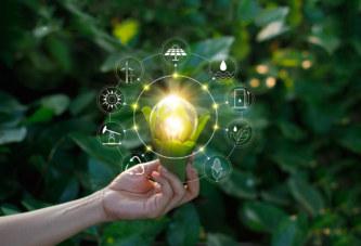 ایدهها و راهکارهایی برای سفر و میهمانی به سبک زندگی سبز