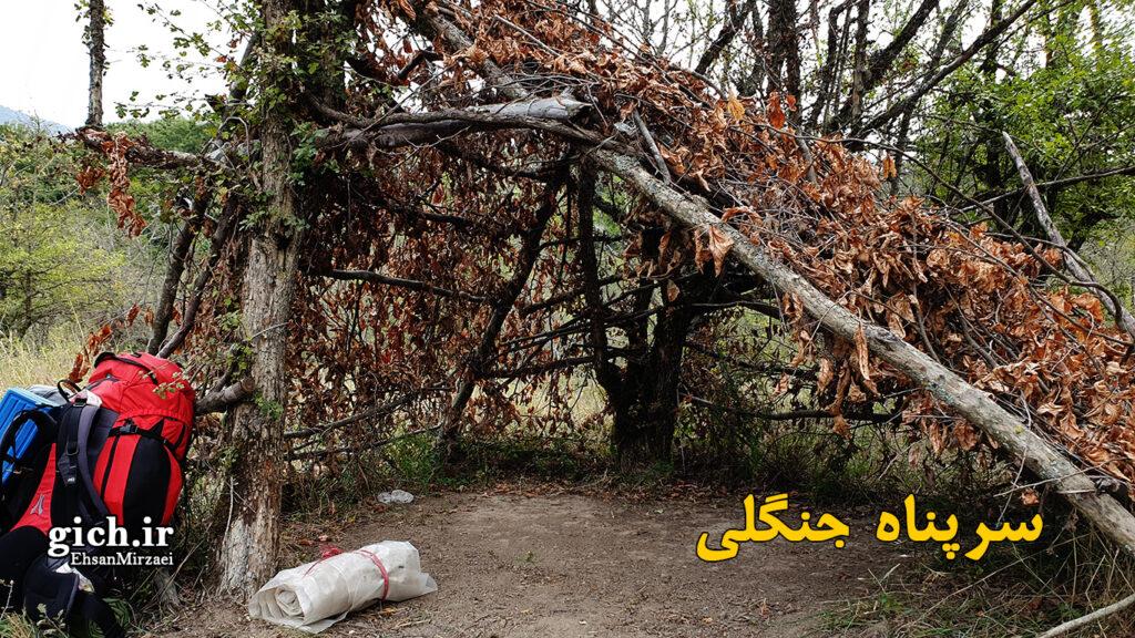 تکنیک های بقا در طبیعت با دست خالی - سرپناه جنگلی - مجله گیچ - عکاس احسان میرزائی