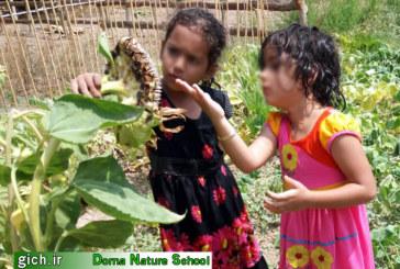 باغچهای برای کودکان، فرصتی برای کشاورزی