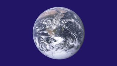 پرچم روز زمین - جان مک کانل - مجله گیچ